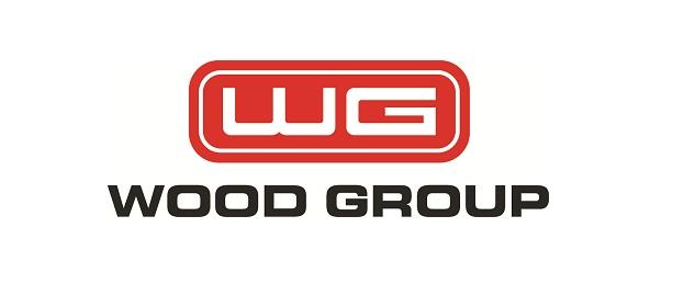 سایت علمی_تفریحی woodgroup