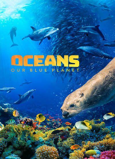 https://www.uplooder.net/img/image/30/86eee7b9cf676e8bfb44c8b80b62f50b/Oceans-Our-Blue-Planet.jpg