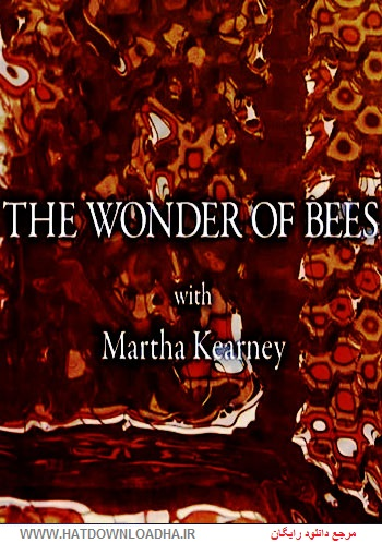 The Wonder of Bees cover دانلود مستند The Wonder of Bees 2014