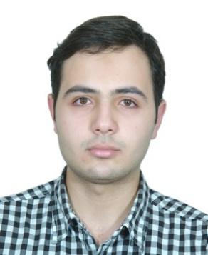 بهروز حریمی عضو هیئت علمی خانه مهندسی نفت ایران
