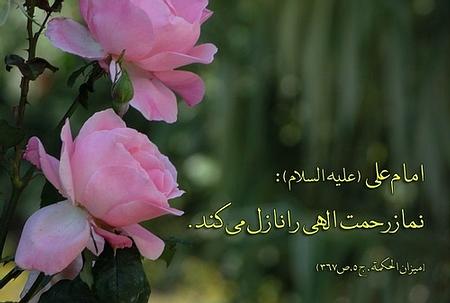 [عکس: 38768732862585894397.jpg]
