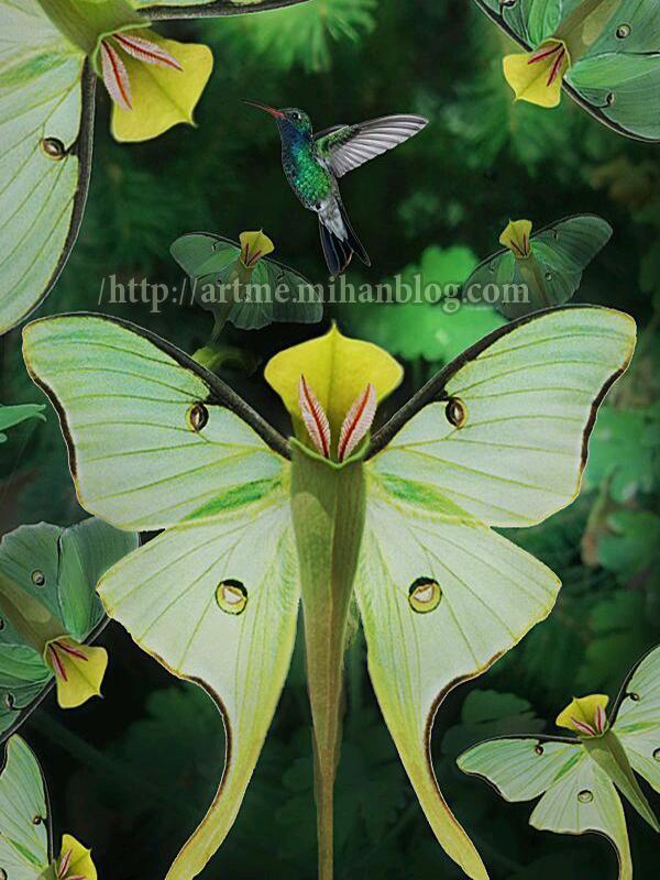 http://www.uplooder.net/img/image/4/f890b044beb436a74cc185baef798f7f/220a89492c0b2c84fd2612a833fc3755.jpg