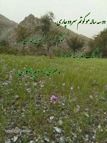 شعر محلی زیبا از یوسف مجیدی