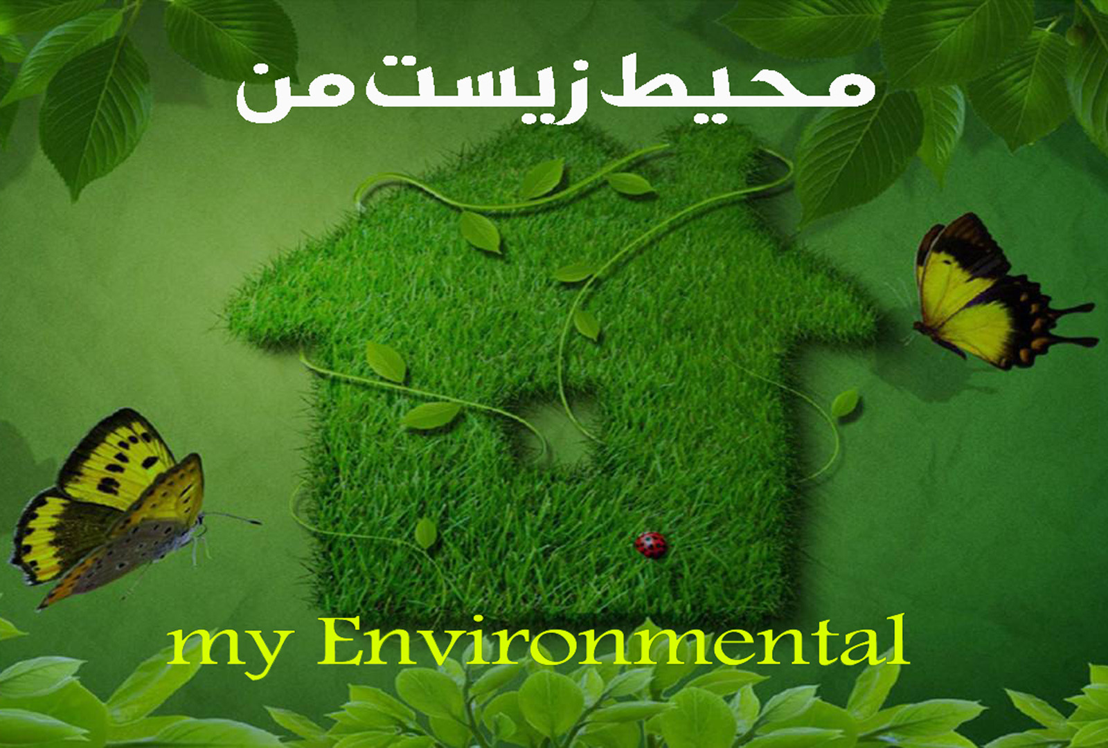 محیط زیست من