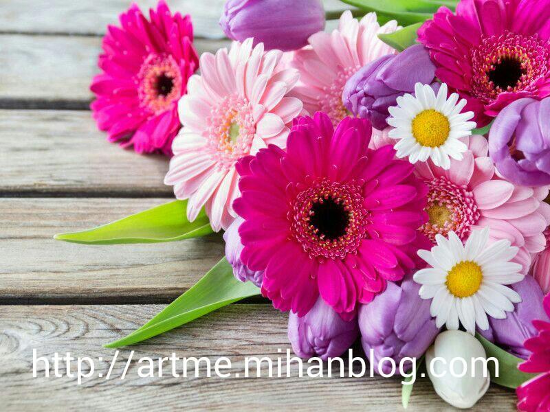 http://www.uplooder.net/img/image/59/a13f32717ce631a0ad88595386fc11f6/PicsArt_1445957005193.jpg
