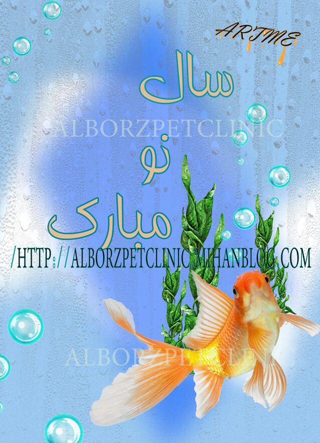 http://www.uplooder.net/img/image/59/dc4575eed81e7a573df229d0dde0725a/photo-2016-03-20-20-29-27.jpg