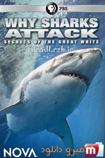 دانلود مستند NOVA: Why Sharks Attack 2014
