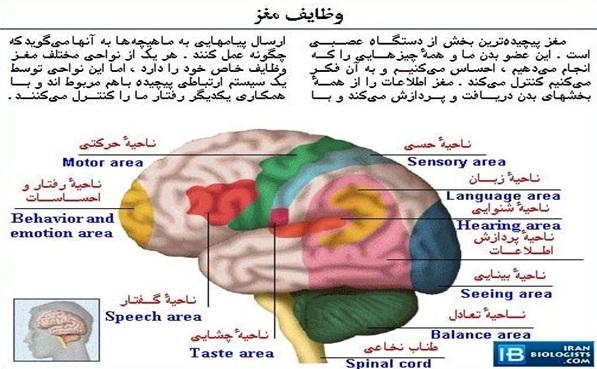 http://www.uplooder.net/img/image/67/3c9e0a8daf8b492d7a4702a48399a2e0/1.jpg