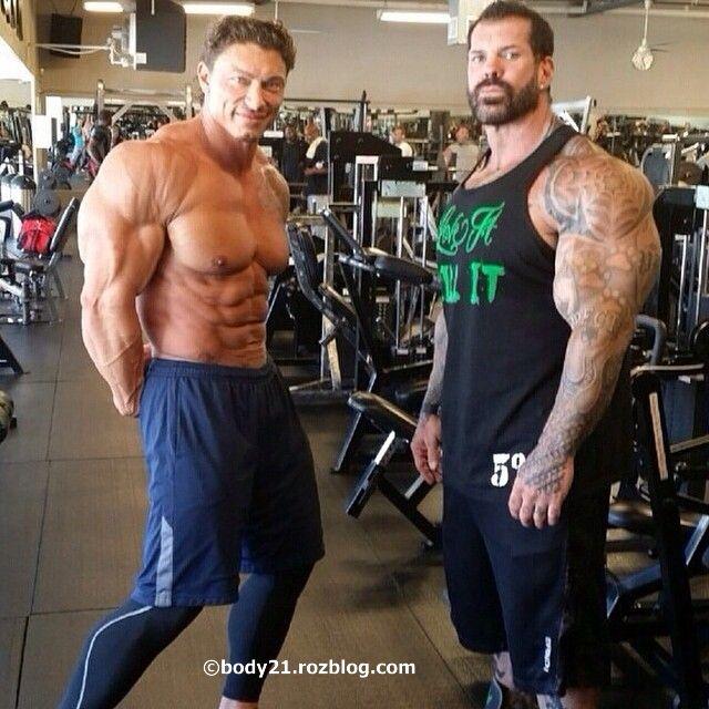 steroidni ciklus
