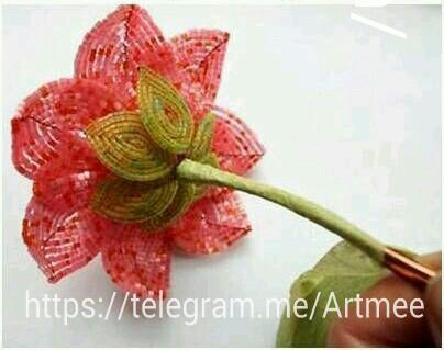http://www.uplooder.net/img/image/77/c52e66977e12efd269fb29bf544230a3/PicsArt_1445939664525.jpg