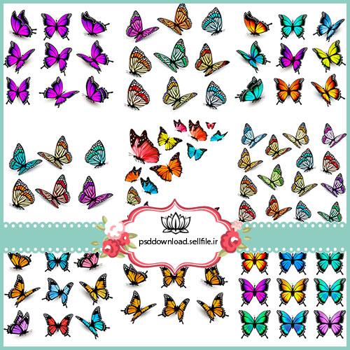 استوک پروانه
