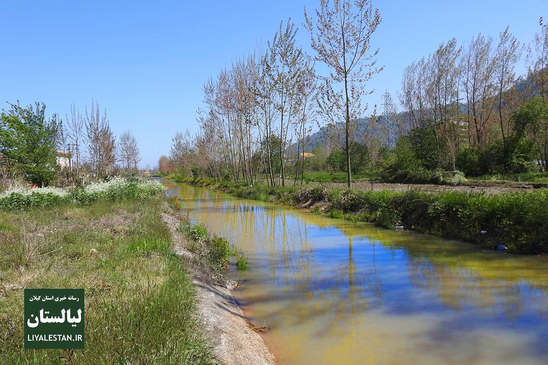 هشدار خنده دار آب منطقهای: در کانالهای آب شنا نکنید!