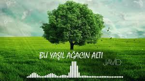 دانلود آهنگ Javid  بنام Bu Yaşıl Ağacın Altı موزیک آذربایجانی جدید2019