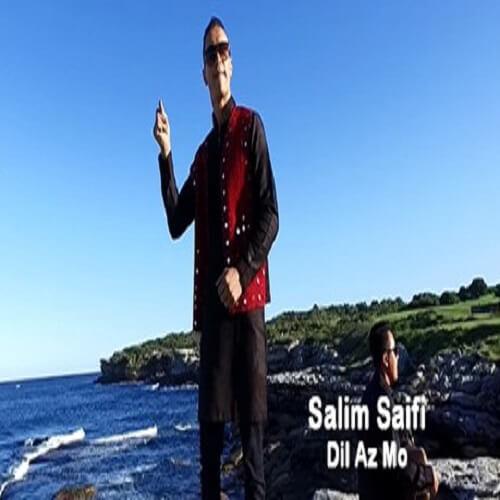 http://www.uplooder.net/img/image/90/6c1950d27e9866ed53061e589de94d46/Salim-Saifi---Dil-Az-Mo.jpg