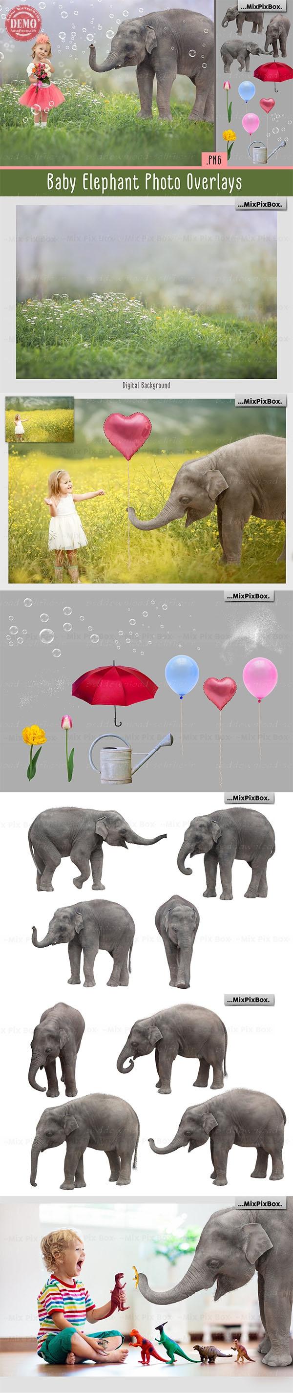 افکت فیل
